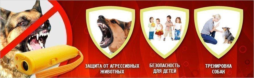 Персональные портативные отпугиватели собак как сделать отпугиватель собак своими руками